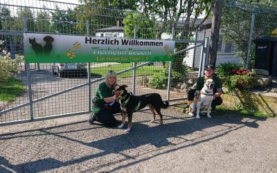 2.400 Euro Spende aus dem 1. Dog Run Charity-Lauf
