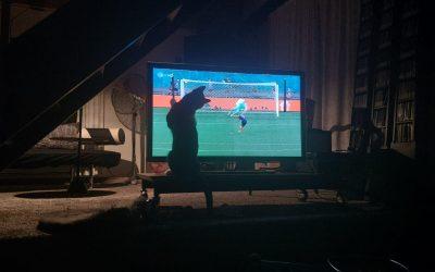 Fußballfan Paulchen (ehem. Paolo) lässt grüßen